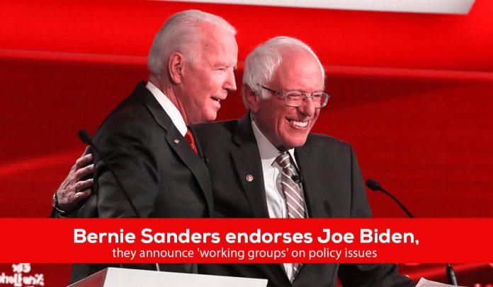Bernie Sanders endorses Joe Biden for Democratic nomination
