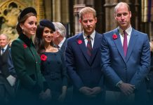 British Royal Family concerned about Archie's skin tone, conservative politicians Defended