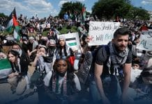 People across America joined pro-Palestinian demonstrations over the weekend