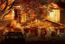 California Wildfire Prompts Flex Alert For Monday