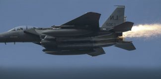 US Pilot Grant Thompson Thanked Simpson who Guaranteed Safe landing